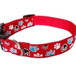 Red pawprints house collar