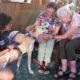 Dogs visit elderly