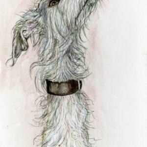 Elle Wilson - A little Scrufty Woofty