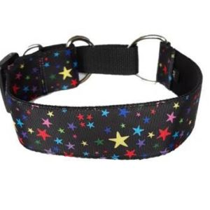 Colourful stars martingale collar