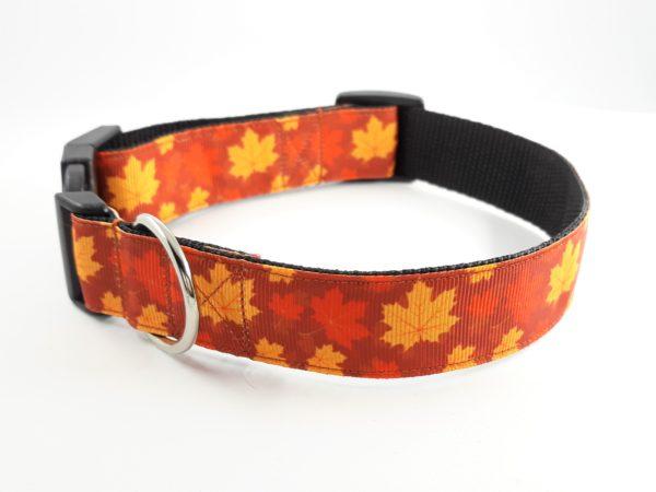 Maple leaf house collar
