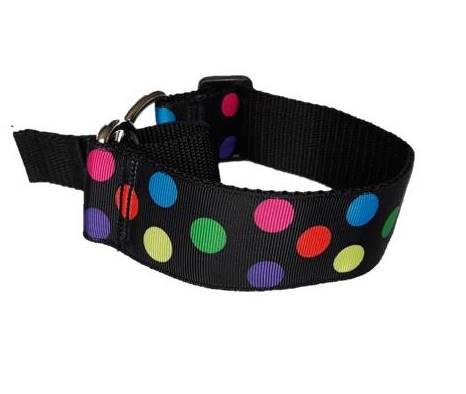 Multicolour circles martingale collar