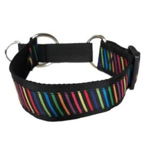 Multicolour stripes martingale collar