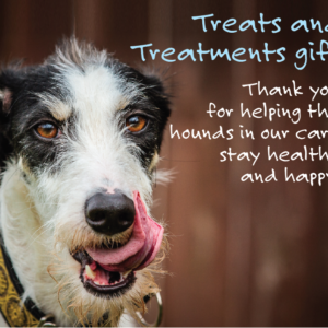Treats treatments gift donation