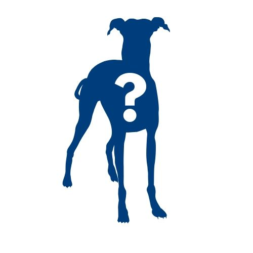 Silhouette of dog with question mark