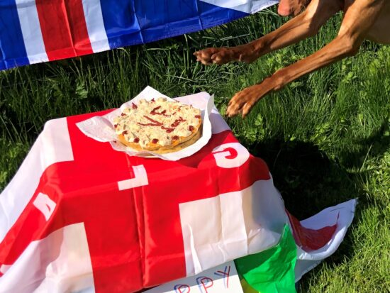 Dog with cake and UK flags