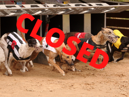 greyhounds on a race track, leaving the trap, with the word 'closed' in the forefront