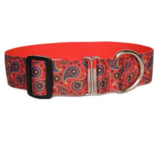 red paisley walking collar