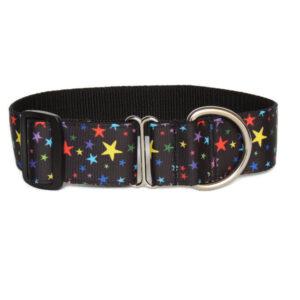 colourful stars walking collar