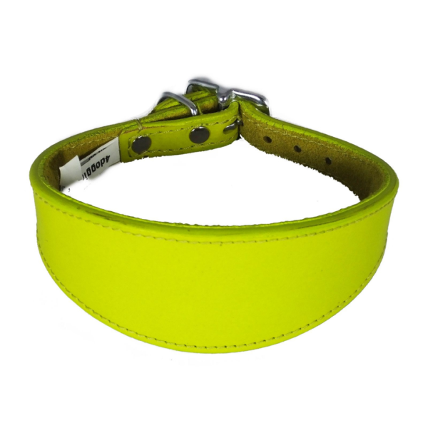 Yellow leather sighthound collar