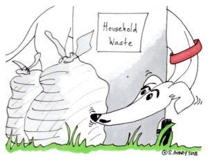 Dog sniffs rubbish bins