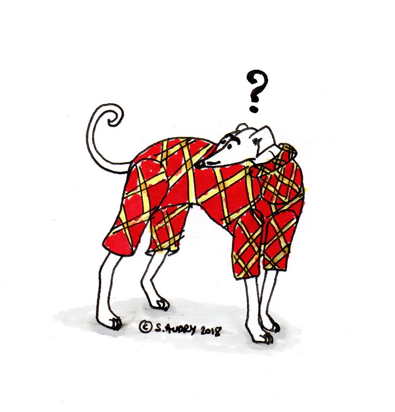 Cartoon of confused dog wearing pajamas