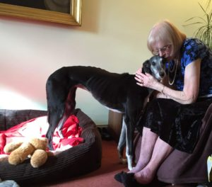 Woman hugging a lurcher